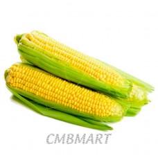 Corn 1 pc