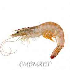 Shrimp middle size.(40-60)