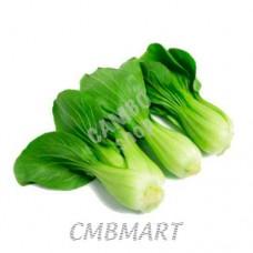 Pak Choi (Bok Choy) Cabbage. 青江白菜