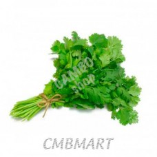Cilantro bundle 20 gm.