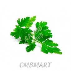 Parsley 20- 25 Gm 1 sheaf