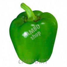 Bell pepper green.