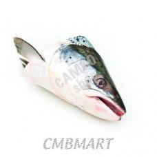Salmon.  Head 450g
