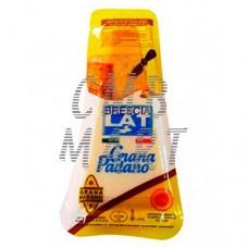 Brescia Grana Padano Cheese 285 gm