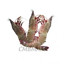 Shrimp. 10-15 pcs in 1 kg