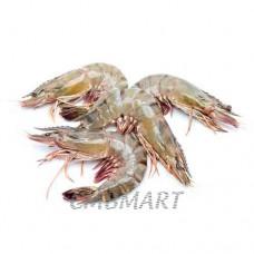 Shrimp.(30-40)