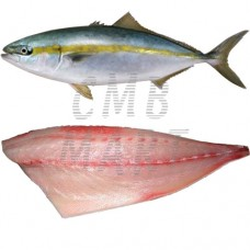 Kingfish – Yellowtail Fillet 500g